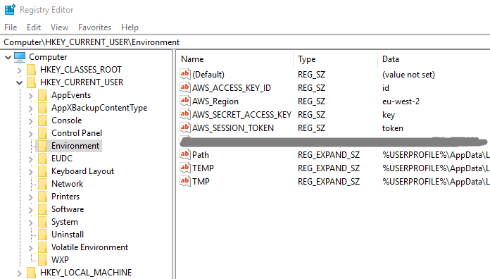 Region environment variable for RegionEndpoint issue
